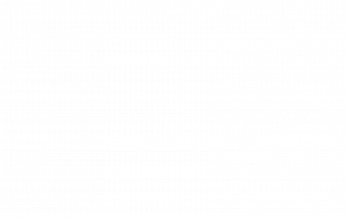 Neural Organization Technique